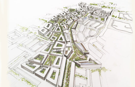 Towards a Vision of Sustainable Urban Design: Cities for Nature